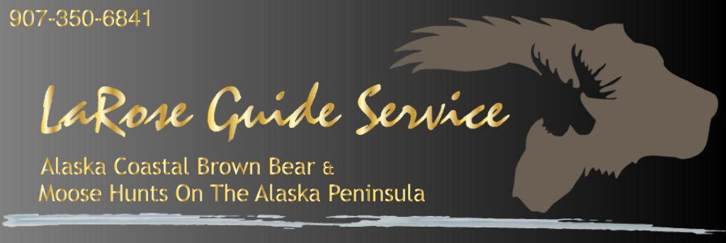 Alaska Coastal Brown Bear Hunts With Larose Guide Service